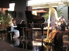 Pianoharp